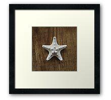 Starfish #5 Framed Print
