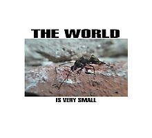 the world Photographic Print