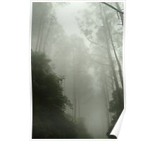 Joe Mortelliti Gallery - Black Spur, gateway to the Mystic Mountains, Victoria, Australia. Poster