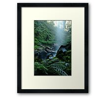 Joe Mortelliti Gallery - Bindaree Falls on Mt Stirling, alpine Victoria, Australia. Framed Print