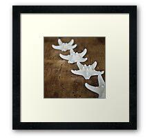 Starfish #8 Framed Print