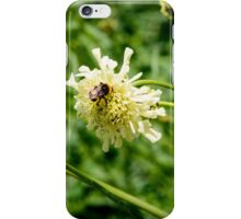 Flower and a Bee iPhone Case/Skin