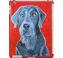 Blue II  iPad Case/Skin
