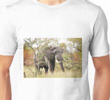 Bush Elephant - Loxodonta africana Unisex T-Shirt