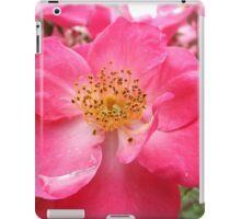 NY June Flower Close-Up, Liberty Community Garden, Lower Manhattan, New York City iPad Case/Skin