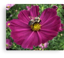 The Pollenator Canvas Print