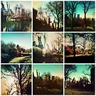 Central Park Collective by ShellyKay