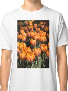 Tulips, Tulips, Tulips! Classic T-Shirt