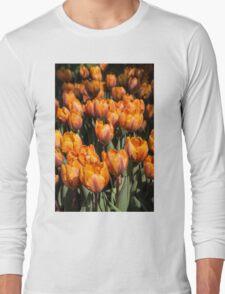 Tulips, Tulips, Tulips! Long Sleeve T-Shirt