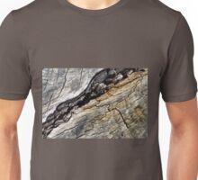 Fissure Unisex T-Shirt