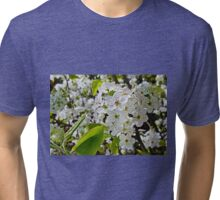 The First Blossoms of Spring Tri-blend T-Shirt