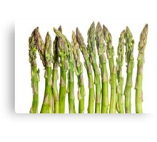 Asparagus Isolated On White Background Metal Print