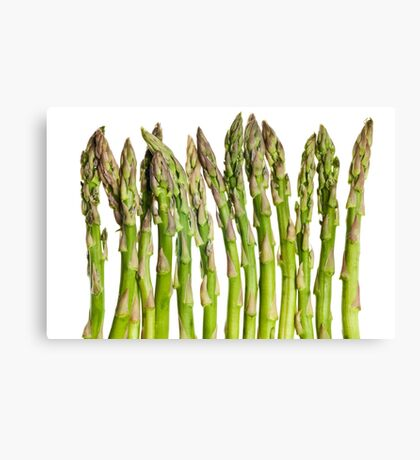 Asparagus Isolated On White Background Canvas Print