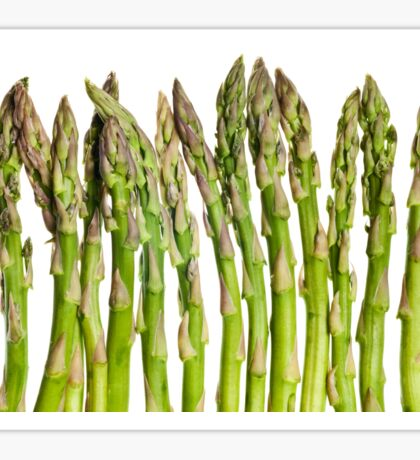 Asparagus Isolated On White Background Sticker