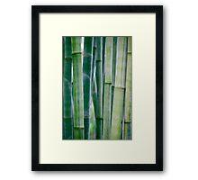 Green Zen Bamboo Stalks Framed Print