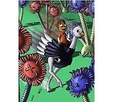 Ostrich Pal Photographic Print
