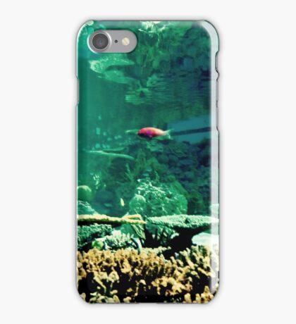 Little Fish in a Big Blue World iPhone Case/Skin
