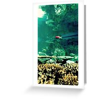 Little Fish in a Big Blue World Greeting Card