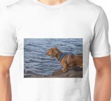 Alfie contemplating the world over the ocean Unisex T-Shirt