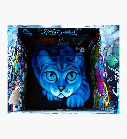 Hosier Lane Cat Photographic Print
