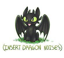 (Insert Dragon Noises) Photographic Print
