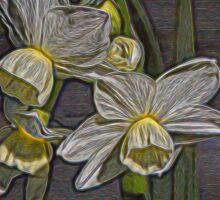 Daffodil Glow Sticker