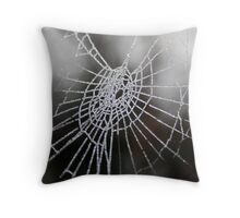 Frosted Cobweb Throw Pillow