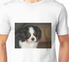 Rupert Unisex T-Shirt
