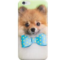 Cute Pomeranian with a ribbon iPhone Case/Skin