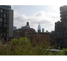 A Distant Empire State, from the High Line Photographic Print
