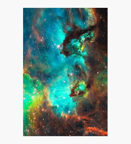 Galaxy / Seahorse / Large Magellanic Cloud / Tarantula Nebula Photographic Print