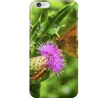 Butterfly on a thistle with orange insect iPhone Case/Skin