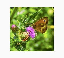 Butterfly on a thistle with orange insect Unisex T-Shirt