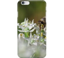 Honey bee on chive flower iPhone Case/Skin