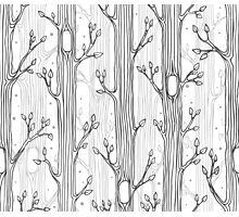 Seamless pattern with trees, grayscale Photographic Print