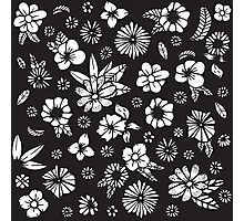 Black and White Hand Drawn Flowers and Foliage Photographic Print