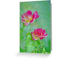 Roses - Abstract Greeting Card