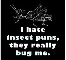I hate insect puns... Photographic Print