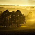 The downs in Autumn by Ian Hufton
