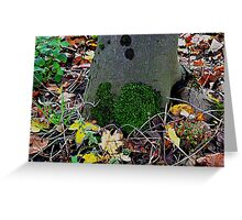 NATURE moss tree  Greeting Card