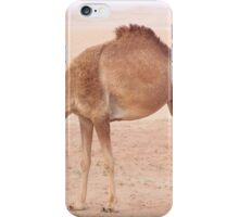 Camel in desert iPhone Case/Skin