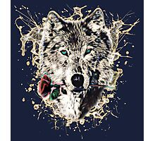 Wolf with Rose, Love Symbol, Wolves, Nature, Native, Splash,  Photographic Print