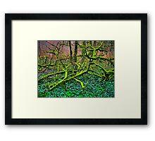 pincer movement Framed Print