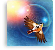Bird in the rays of light Canvas Print