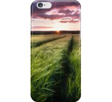 Barley fields at Sunset iPhone Case/Skin