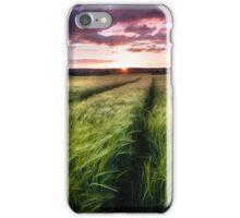 Barley fields at Sunset iPhone Case/Skin