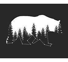 Bear Constallation Photographic Print