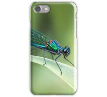 Banded Demoiselle iPhone Case/Skin