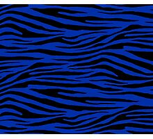 0322 International Klein Blue Tiger Photographic Print
