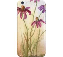 Summers Ebb iPhone Case/Skin